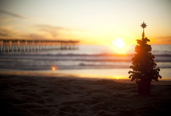 Beach_Christmas_Tree 1